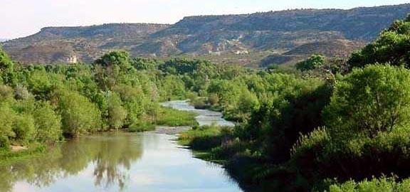 Cottonwood AZ Verde River